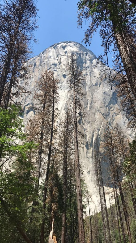 El Capitan in Yosemite National Park