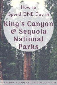 How to Spend a Day Trip to King's Canyon & Sequoia National Parks in ONE Day! #kingscanyon #sequoia #nationalpark #hiking