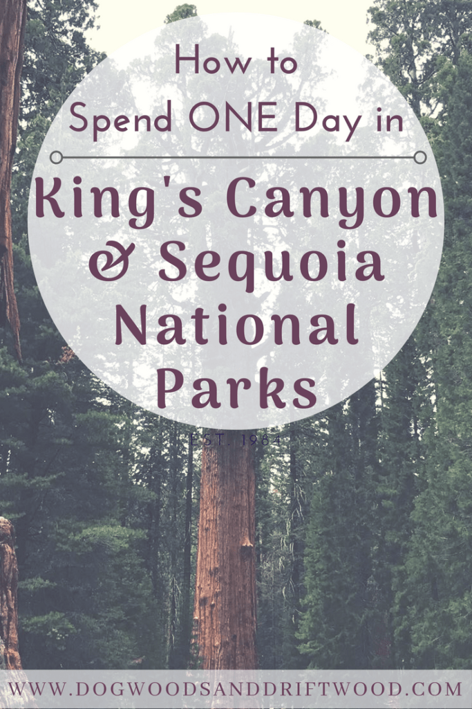 How to Spend One Day in King's Canyon and Sequoia National Parks