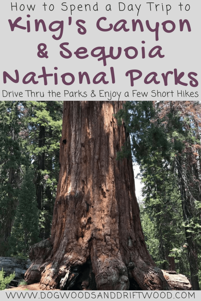 How to Spend a Day Trip to King's Canyon and Sequoia National Parks