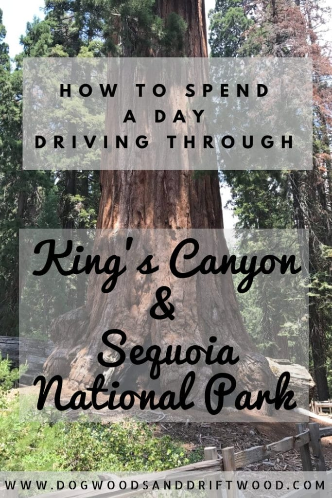 How to Spend a Day in Kings Canyon & Sequoia National Parks