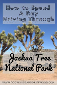 How to spend one day driving through Joshua Tree National Park! See Key's View, Skull Rock, and more! #joshuatree #nationalpark #skullrock