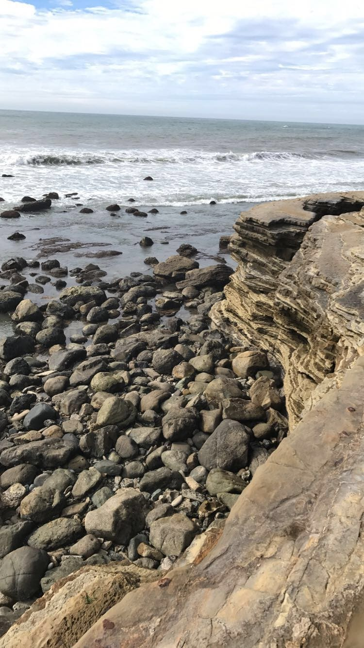 Tide Pools at Cabrillo National Monument in San Diego, California! #tidepools #cabrillo #sandiego