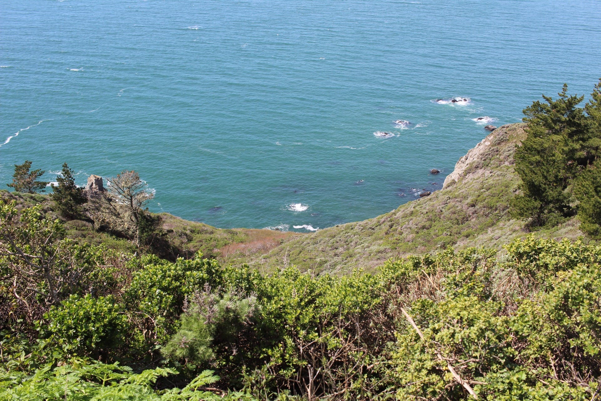 Muir Beach Overlook, California