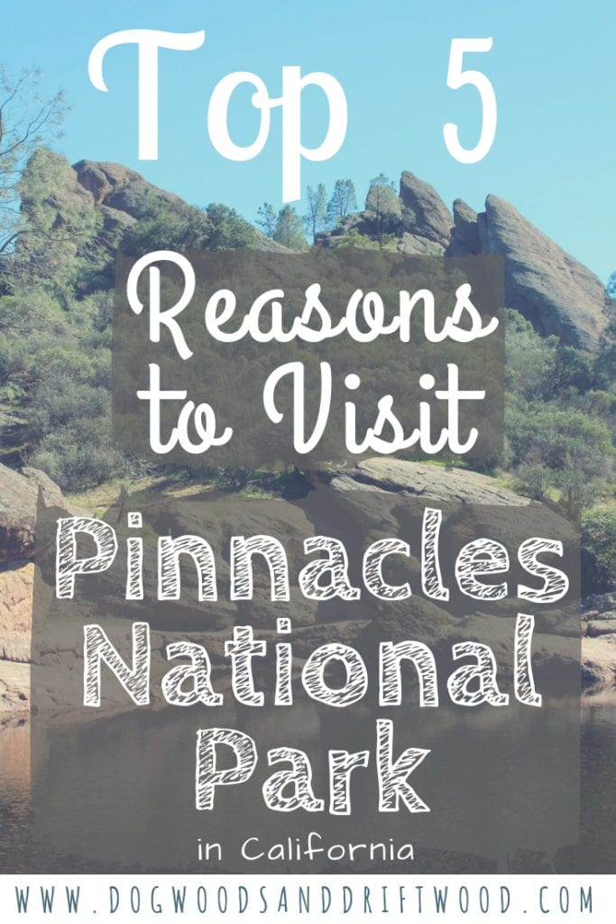 Click to read the 5 reasons why you should add Pinnacles National Park to your travel bucket list! #cavehiking #rockclimbing #pinnacles #nationalpark #californiacondor #taluscaves