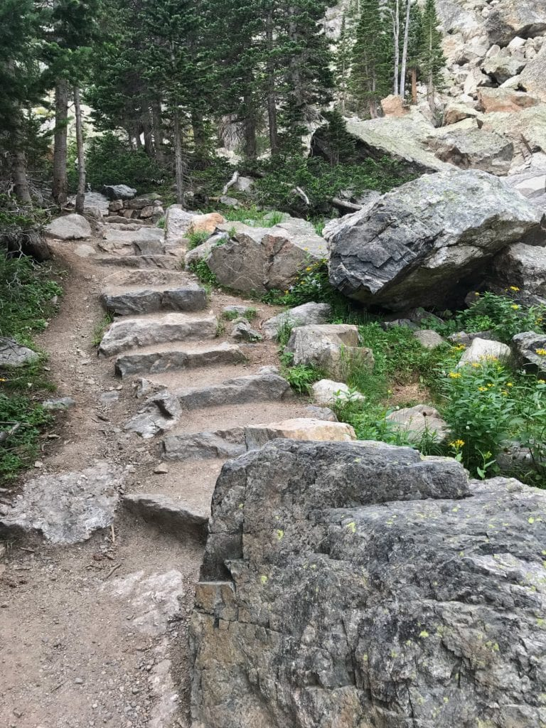 stairs on hiking trail