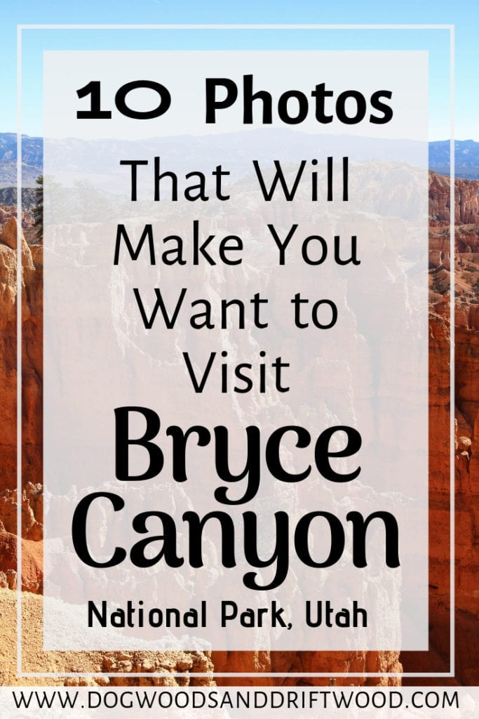 Let these 10 photos inspire you to visit Bryce Canyon National Park in Utah! These photos will make you add Bryce Canyon to your bucket list of travel destinations! #bryce #brycecanyon #nationalpark