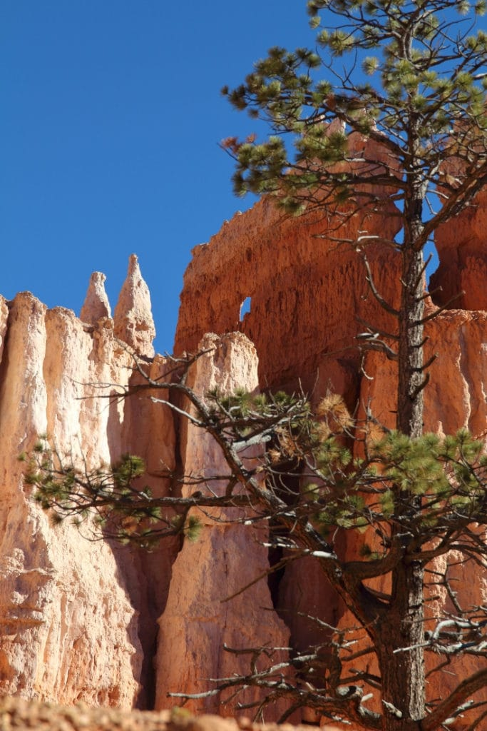 Navajo/Queens Garden Loop, Bryce Canyon National Park, Utah