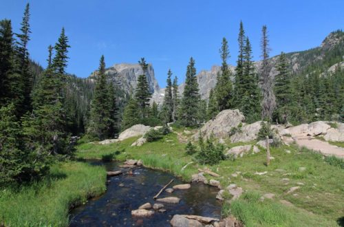creek in rocky mountains with trees