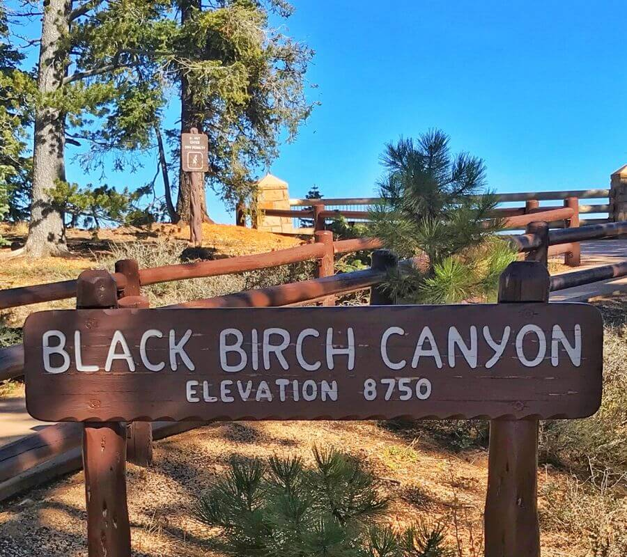 Black Birch Canyon sign